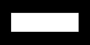 logo-steljes_blanc