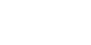 logo-vienna_blanc